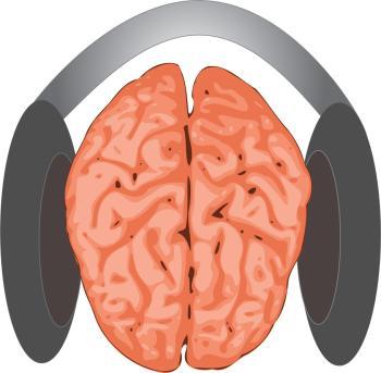 mitos-sobre-el-cerebro-1