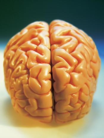 mitos-sobre-el-cerebro-2