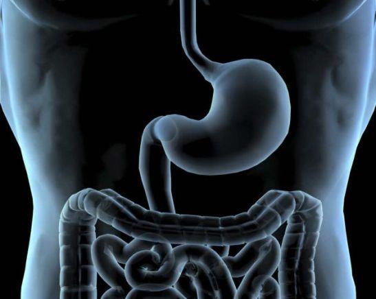 Por-que-hace-el-ruido-el-estomago-cuando-tenemos-hambre-1