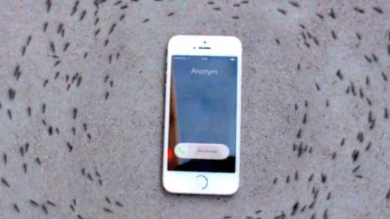 1441284625-iphone